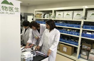日本研发中心落成 植物医生演绎国妆输出的全球化思路 媒体报道 植物医生