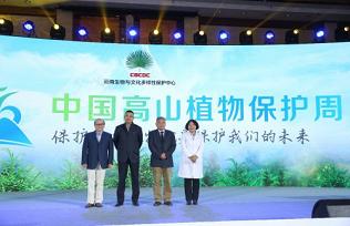 植物医生公益携手陈伟霆 以高山植物为核心推广生物多样性保护 品牌新闻 植物医生